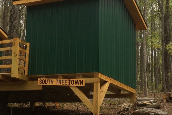 2-SouthTreeTown